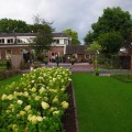 Tuin - Bed and Breakfast Zwolle De Langenlee